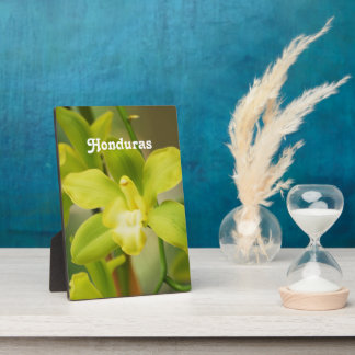 Orchids Display Plaque