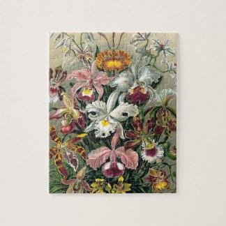 Orchids Puzzles