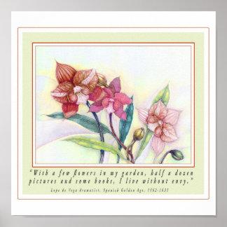 Orchids (Q/de Vega) Poster