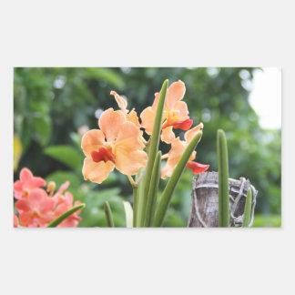 Orchids Rectangular Sticker
