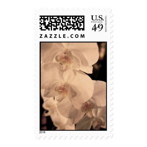 Orchids Stamp