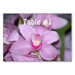 Orchids Table Cards