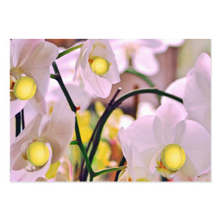 Orchids Tennis Bus.Card Large Business Card