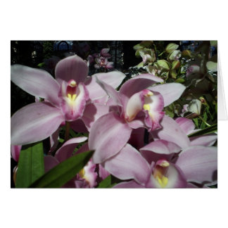 Orchids Thinking of You Greeting Card