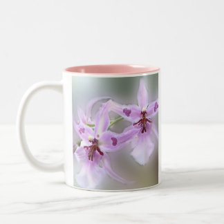 Orchids Two-Tone Coffee Mug