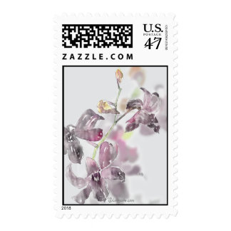 Orchids Wedding Postage Stamps