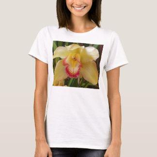 orcid T-Shirt