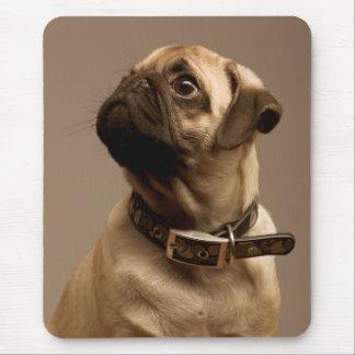 Ordenador canino Mousepad del perro de perrito del