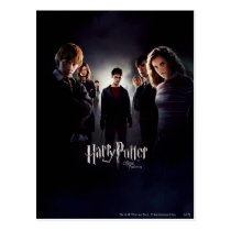 Order of the Phoenix - French 1 Postcard