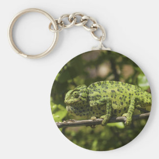 Ordinary European Chameleon Stress Staining Keychain