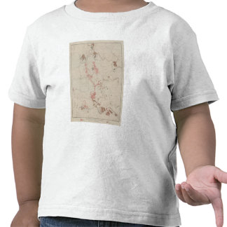 OreBodies and Topography of MineHill, New Almaden Tee Shirts