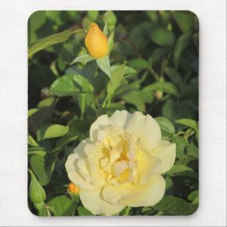 Oregold Yellow Rose Mousepad