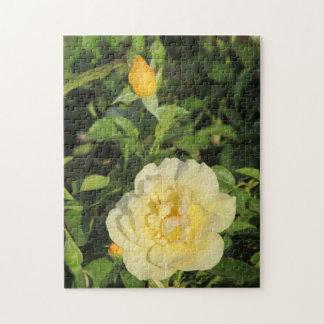 Oregold Yellow Rose Puzzle