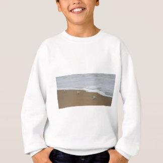 Oregon Beach & Sanderlings Sweatshirt