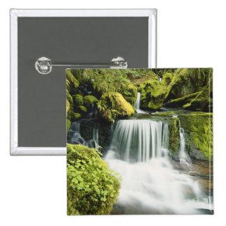 Oregon, cascada en el nacional de Willamette Pin