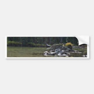 Oregon Cascades, Devils Lake Bumper Sticker