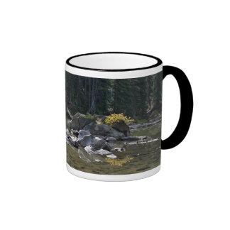 Oregon Cascades, Devils Lake Coffee Mugs