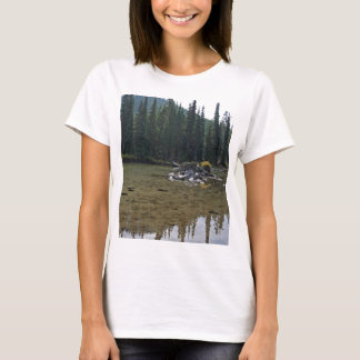 Oregon Cascades, Devils Lake T-Shirt
