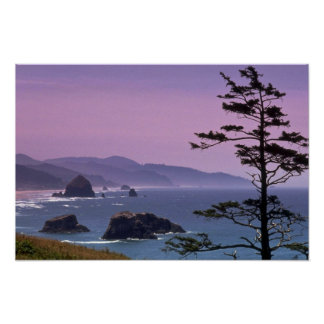 Oregon coast, Ecola State Park, Oregon Poster