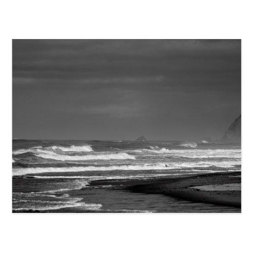 Oregon Coast Majesty in Monochrome Postcard