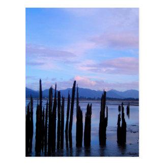 Oregon Coast Ocean Silhouette Postcard
