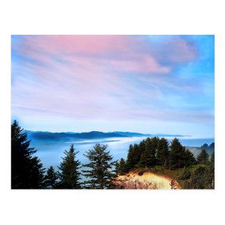 Oregon Coast Post Card