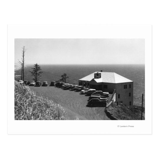 Oregon Coast Sea Lion Caves Main Office Postcard