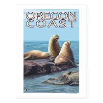 Oregon Coast Sea Lions Postcard