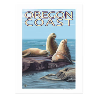 Oregon Coast Sea Lions Postcard