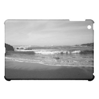 Oregon Coast Tidal Shift Speck iPad Case