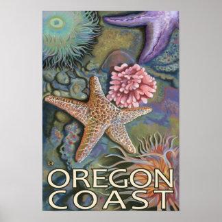Oregon Coast Tidepool Poster