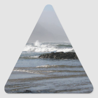 Oregon Coast Triangle Sticker