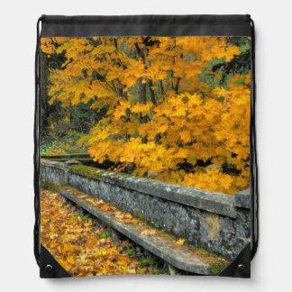 Oregon, Columbia River Gorge National Park Drawstring Bags