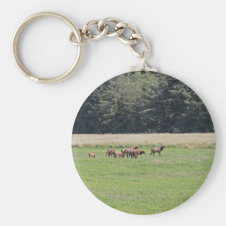 Oregon Cow & Calf Elk Keychain