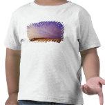 Oregon Dunes National Recreation Area, Oregon T-shirts