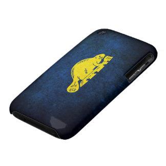 Oregon Flag (back) iPhone 3 Covers