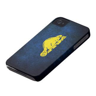 Oregon Flag (back) iPhone 4 Case
