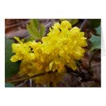 Oregon Grape Flowers Yellow Wildflowers Greeting Card