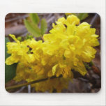 Oregon Grape Flowers Yellow Wildflowers Mouse Pad