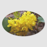 Oregon Grape Flowers Yellow Wildflowers Oval Sticker