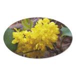 Oregon Grape Flowers Yellow Wildflowers Oval Sticker