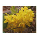Oregon Grape Flowers Yellow Wildflowers Wood Wall Art