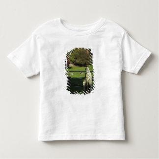 Oregon, Lake Oswego, Oswego Pioneer Cemetery Toddler T-shirt