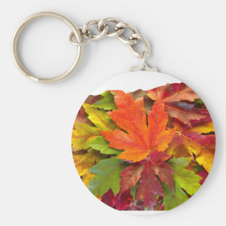 Oregon Maple Leaves Mixed Fall Colors Keychain