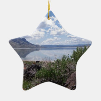 Oregon Outback Lake Abert Christmas Tree Ornament