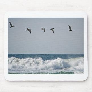 Oregon Pelicans Mouse Pads