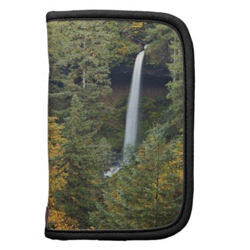 Oregon, plata cae parque de estado, al norte cae organizador