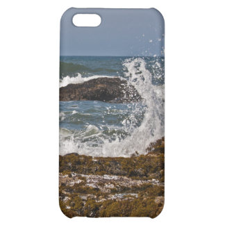 Oregon Rocks and Waves Cover For iPhone 5C