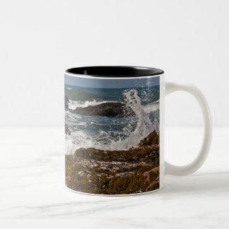 Oregon Rocks and Waves Two-Tone Coffee Mug
