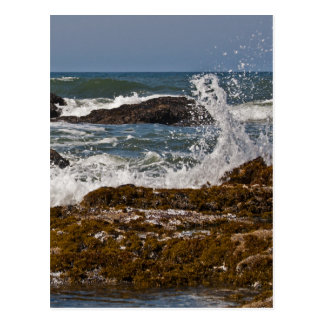 Oregon Rocks and Waves Postcard